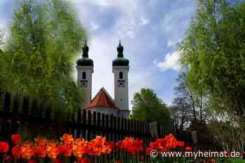 St. Joseph-Kirche in Tutzing im Wonnemonat Mai mit prachtvollen Tulpen - München - myheimat.de - myheimat.de