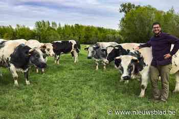 """Matthias opent hoevewinkel met vlees van koeien die hij zelf grootbracht: """"Consumenten stellen zich steeds meer vragen bij de kwaliteit van de producten die ze kopen"""" - Het Nieuwsblad"""