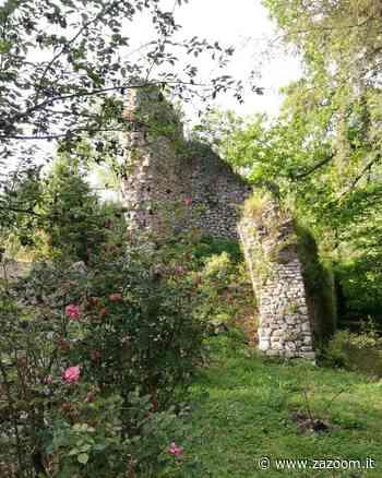 Giardino di Ninfa   il Paradiso è a Cisterna di Latina - Zazoom Blog