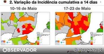 Boletim DGS. Amadora, Cascais e Odivelas, na periferia de Lisboa, aumentaram a incidência na última semana - Observador