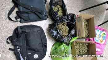 Encontraron más de dos kilos de marihuana en Olmos - El Editor Platense
