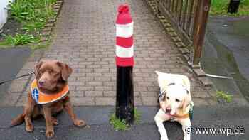 Aktion in Bad Berleburg: Rot-weiße Mützen für die Poller - Westfalenpost