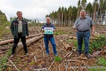 Selters bittet um Spenden für den Wald - Film und Überraschungsflyer - WW-Kurier - Internetzeitung für den Westerwaldkreis