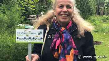Naturschutz: Blühende Wiesen, Plätze und Parks für Hohen Neuendorf - moz.de