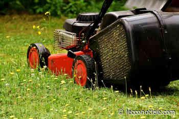 Calolziocorte verso l'affidamento in house del piano del verde a Silea tagli erba - Lecco Notizie