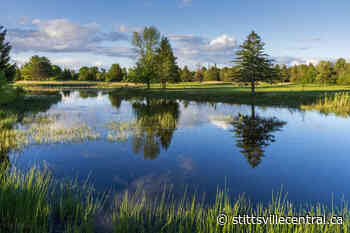 Golf is open at Amberwood Golf & Country Club - StittsvilleCentral.ca