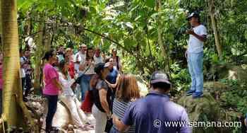 ¿Qué es Bosques de paz, en Mocoa, y por qué recibió premio a la excelencia ambiental? - Semana