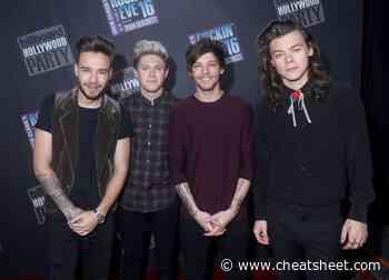 Louis Tomlinson On One Direction: 'Hopefully We Come Back' - Showbiz Cheat Sheet
