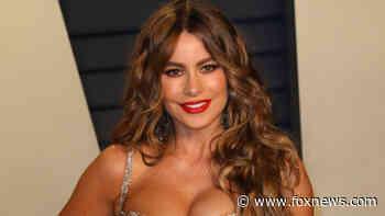 Sofia Vergara shares cheeky throwback photo in two-piece lingerie - Fox News