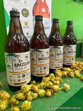 Cervejas artesanais são trocadas por alimentos em Lages - NSC Total