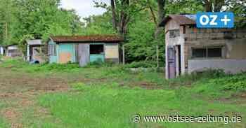 Darum werden in Ribnitz-Damgarten aus Kleingärten Baugrundstücke - Ostsee Zeitung
