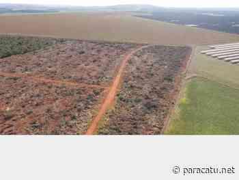 Fazendeiro é autuado por desmatamento ilegal em Paracatu/MG - Notícias - paracatu.net