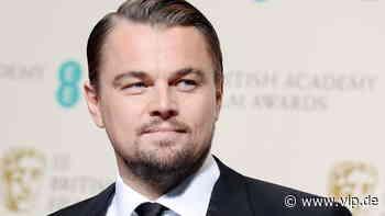 Endlich die Hochzeit? Leonardo DiCaprio soll Camila Morrone bald einen Antrag machen - VIP.de, Star News