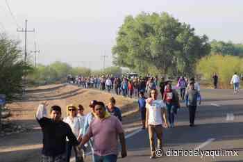 Regresa la Santísima Trinidad a Huatabampo - Diario del Yaqui