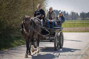 Eine Kutschfahrt im Lechtal - Meitingen - myheimat.de - myheimat.de