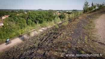 Hénin-Carvin : des randonnées à pied, à vélo ou avec un âne proposées cet été par l'agglo - La Voix du Nord