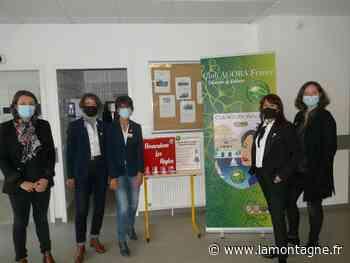Les lycéennes auront un accès gratuit aux protections hygiéniques - La Montagne