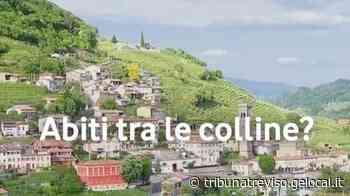 Vodafone e Nutella scelgono le colline di Valdobbiadene - La Tribuna di Treviso