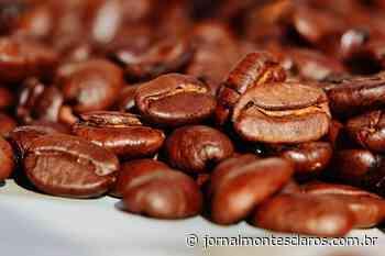 Quais são as características do café especial?   Jornal Montes Claros - Jornal Montes Claros
