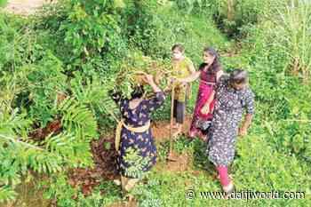 Mangaluru: Lockdown leisure time provides scope for voluntary work - Daijiworld.com