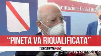 """Pineta di Varcaturo, De Luca: """"Doveroso bloccare la vendita"""" - Teleclubitalia.it"""