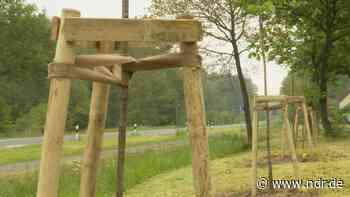 Grafschaft Bentheim: 20 Bäume erinnern an Corona-Tote - NDR.de