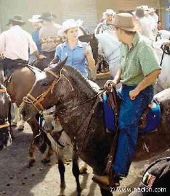 San Ramón de fiesta - La Nación Costa Rica