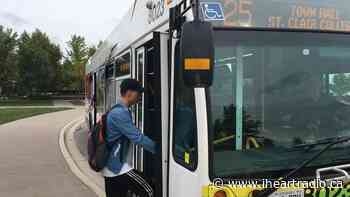 Transit Windsor Negotiating to Bring Bus Service to Amherstburg - AM800 (iHeartRadio)