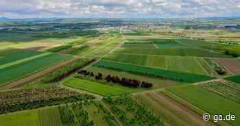 Windpark in Meckenheim und Rheinbach: Bürgerinitiative befürchtet Gesundheitsgefahr - General-Anzeiger Bonn