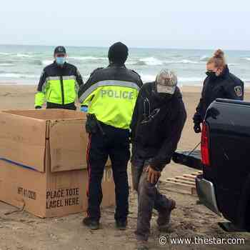 VIDEO: Deer rescued from Cobourg beach area, transported to Napanee wildlife centre - Toronto Star