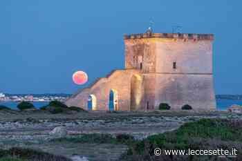 Lo spettacolo della superluna a Torre Lapillo - LecceSette