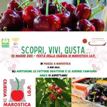 Domenica la Rossa di Marostica in piazza degli Scacchi… e non solo - Padova News