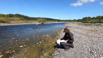 Blue Lake Rancheria cautions 'low levels of toxins' in Mad River algae - KRCRTV.COM