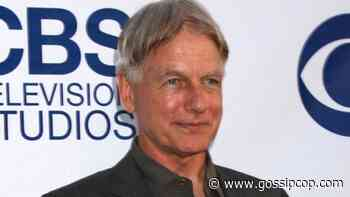 Mark Harmon One Of The 'Worst Cheapskates In The Business'? - Gossip Cop