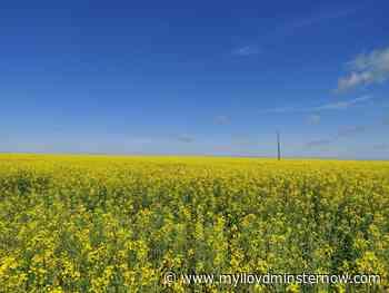 Saskatchewan Farmers have another ahead of schedule seeding week - My Lloydminster Now
