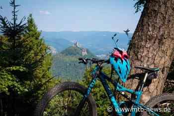 MTB-Trailcamp Pfälzerwald – Annweiler am Trifels - Mountainbike-Events - MTB-News.de
