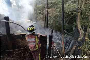 Mujer herida y pérdidas materiales deja incendio en Tabio, Cundinamarca - Noticias Día a Día