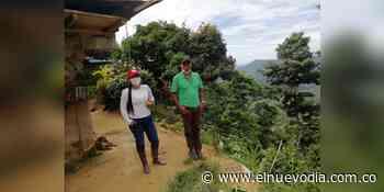 Invierten 3800 millones a la producción de café orgánico de Rioblanco - El Nuevo Dia (Colombia)