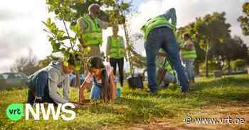 """Gavere deelt 1.000 bomen uit aan inwoners: """"Samen strijden tegen klimaatopwarming"""" - VRT NWS"""