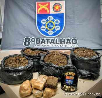 Sacos de maconha são encontrados dentro de casa abandonada em Satuba - TNH1