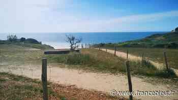 Bidart : après trois ans de travaux, la nature reprend ses droits sur la plage d'Erretegia - France Bleu