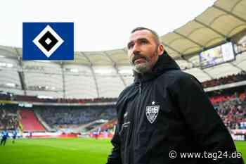 Hamburger SV stellt neuen Trainer Tim Walter vor - TAG24