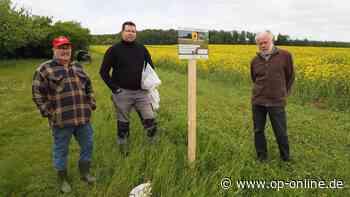 Nidderau: Kaltes Frühjahr: Bienen frieren und hungern - op-online.de