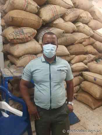 En Tumaco represadas 25 toneladas de cacao - Diario del Sur