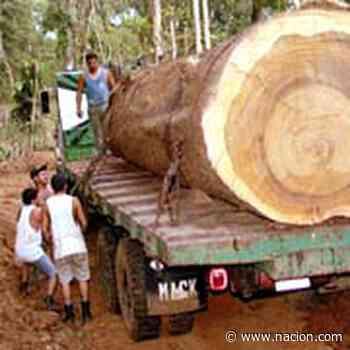 Natura grita agobiada - La Nación Costa Rica