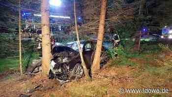 Furth im Wald - Unfall auf der Panoramastraße endet glimpflich - idowa