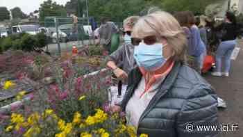 Des plantes gratuites : la bonne idée anti-gaspillage de Cagnes-sur-Mer - LCI