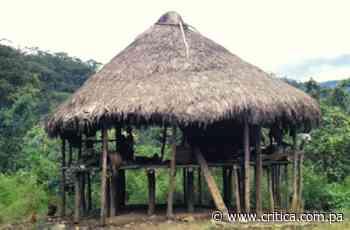 Casas de tambo, alternativa ante inundaciones - Crítica Panamá