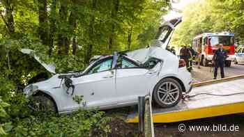 Bedburg: Baum-Crash auf der Landstraße: Golf-Fahrer († 56) stirbt - BILD