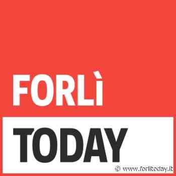 ADDETTO AL MAGAZZINO a SAVIGNANO SUL RUBICONE (FC) - ForlìToday